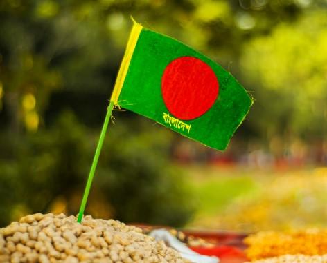 16 December - Bijoy Dibosh - Victory Day Bangladesh