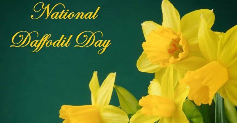 National Daffodil Day