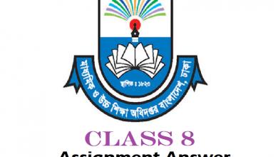 Assignment Class 8 Answer