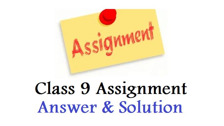 Assignment Class 9 Answer
